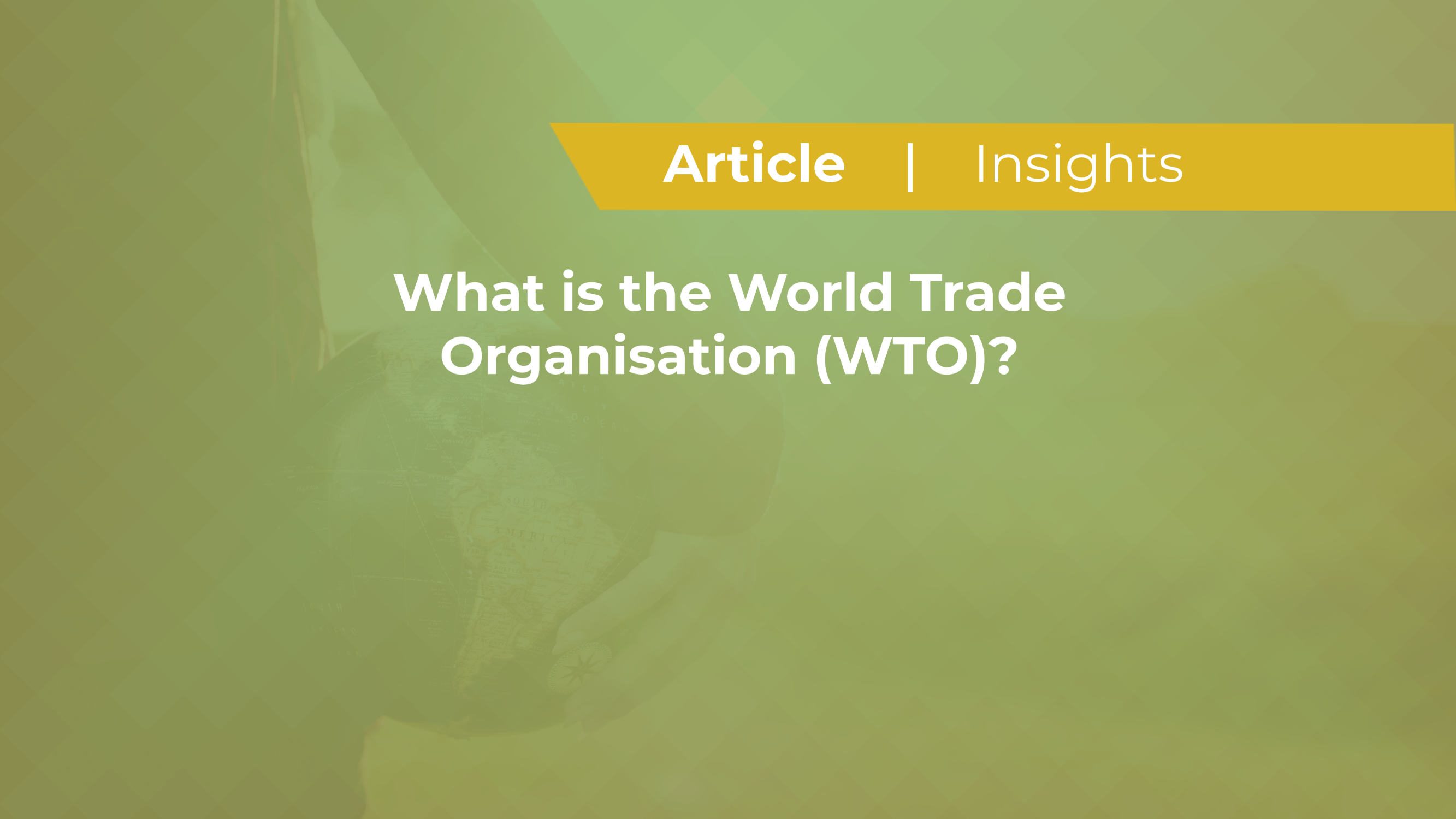 What is the World Trade Organisation